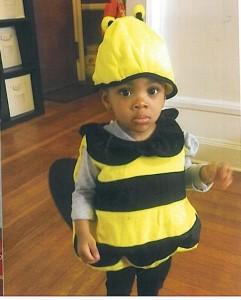 105bumblebee