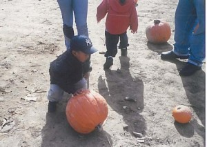 47pumpkinpatch